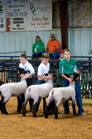MAYES_COUNTY_FAIR_LAMBS_©KTROYER-7712