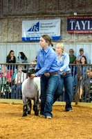MAYES_COUNTY_FAIR_LAMBS_©KTROYER-7858