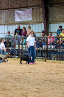 MAYES_COUNTY_FAIR_GOATS_©KTROYER-8446