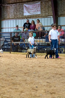 MAYES_COUNTY_FAIR_GOATS_©KTROYER-8447