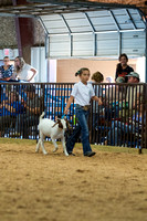 MAYES_COUNTY_FAIR_GOATS_©KTROYER-8452