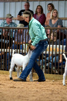 MAYES_COUNTY_FAIR_GOATS_©KTROYER-8454