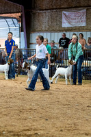 MAYES_COUNTY_FAIR_GOATS_©KTROYER-8458
