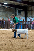 MAYES_COUNTY_FAIR_GOATS_©KTROYER-8461
