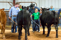 MAYES_COUNTY_FAIR_BEEF_©KTROYER-8692