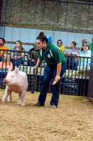 MAYES_COUNTY_FAIR_SWINE_©KTROYER-9654