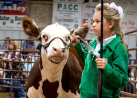 MAYES_COUNTY_FAIR_PREMIUM_SALE_©KTROYER-22