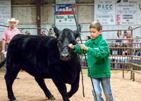 MAYES_COUNTY_FAIR_PREMIUM_SALE_©KTROYER-64