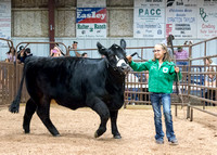 MAYES_COUNTY_FAIR_PREMIUM_SALE_©KTROYER-86