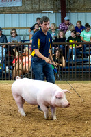 MAYES_COUNTY_FAIR_SWINE_©KTROYER-9456