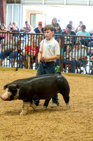 MAYES_COUNTY_FAIR_SWINE_©KTROYER-9736