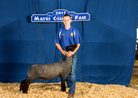MAYES_COUNTY_FAIR_BACKDROP_©KTROYER-7241