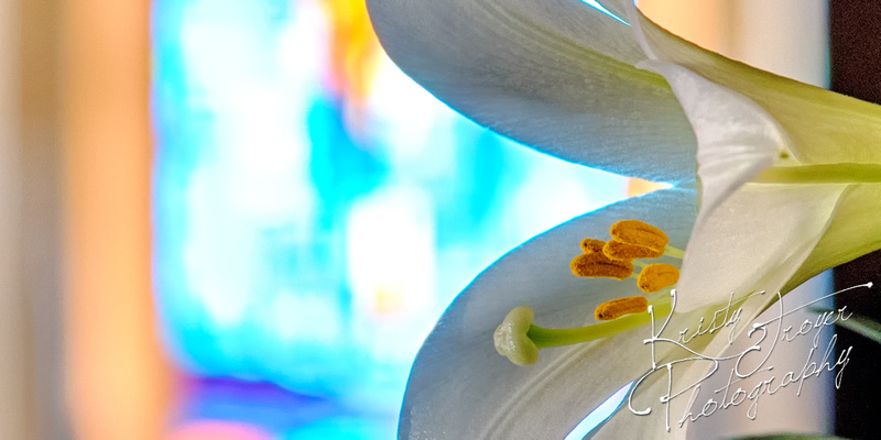 Easter Lily - Stained Glass