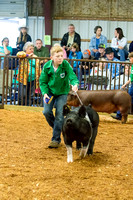 MAYES_COUNTY_FAIR_SWINE_©KTROYER-9348