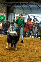 MAYES_COUNTY_FAIR_SWINE_©KTROYER-9344