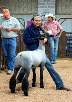 MAYES_COUNTY_FAIR_PREMIUM_SALE_©KTROYER-91