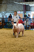 MAYES_COUNTY_FAIR_SWINE_©KTROYER-9653