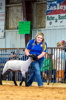 MAYES_COUNTY_FAIR_LAMBS_©KTROYER-7849