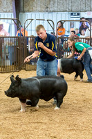 MAYES_COUNTY_FAIR_SWINE_©KTROYER-9570