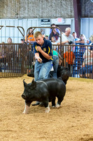 MAYES_COUNTY_FAIR_SWINE_©KTROYER-9569