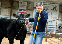 MAYES_COUNTY_FAIR_PREMIUM_SALE_©KTROYER-83