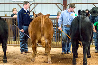 MAYES_COUNTY_FAIR_BEEF_©KTROYER-8694