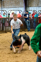 MAYES_COUNTY_FAIR_SWINE_©KTROYER-9554