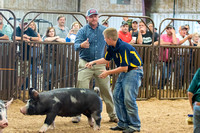 MAYES_COUNTY_FAIR_SWINE_©KTROYER-9742