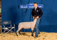 MAYES_COUNTY_FAIR_BACKDROP_©KTROYER-7257