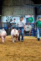 MAYES_COUNTY_FAIR_SWINE_©KTROYER-9343