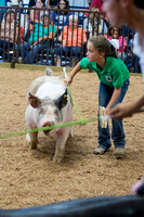 MAYES_COUNTY_FAIR_SWINE_©KTROYER-9729