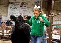 MAYES_COUNTY_FAIR_PREMIUM_SALE_©KTROYER-52