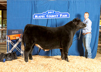 MAYES_COUNTY_FAIR_BEEF_KTROYER-8348