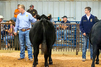 MAYES_COUNTY_FAIR_BEEF_©KTROYER-8686