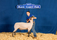 MAYES_COUNTY_FAIR_BACKDROP_©KTROYER-7228