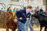 MAYES_COUNTY_FAIR_BEEF_©KTROYER-8698