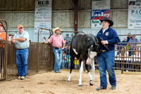MAYES_COUNTY_FAIR_PREMIUM_SALE_©KTROYER-8989