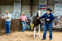 MAYES_COUNTY_FAIR_PREMIUM_SALE_©KTROYER-8990