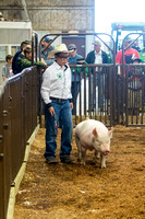 MAYES_COUNTY_FAIR_SWINE_©KTROYER-9353