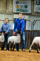 MAYES_COUNTY_FAIR_LAMBS_©KTROYER-7869