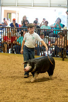 MAYES_COUNTY_FAIR_SWINE_©KTROYER-9735
