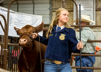 MAYES_COUNTY_FAIR_PREMIUM_SALE_©KTROYER-94