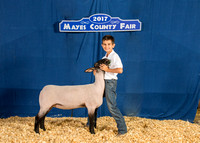 MAYES_COUNTY_FAIR_BACKDROP_©KTROYER-7223