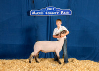 MAYES_COUNTY_FAIR_BACKDROP_©KTROYER-7280