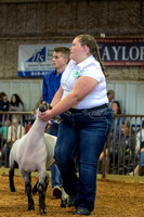 MAYES_COUNTY_FAIR_LAMBS_©KTROYER-7876