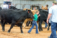 MAYES_COUNTY_FAIR_BEEF_©KTROYER-8681