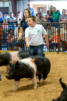 MAYES_COUNTY_FAIR_SWINE_©KTROYER-9558