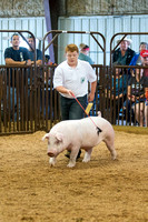 MAYES_COUNTY_FAIR_SWINE_©KTROYER-9439