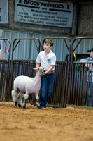MAYES_COUNTY_FAIR_LAMBS_©KTROYER-7867