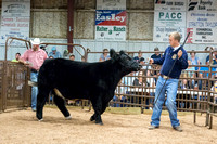 MAYES_COUNTY_FAIR_PREMIUM_SALE_©KTROYER-8978